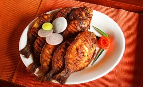 Alappuzha House boat Cuisines