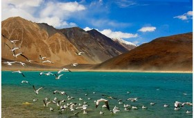 A trekking holiday to the land of high passes, Ladakh