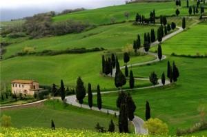 Ooty-Green-Garden