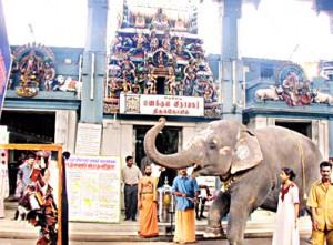 ManakulaVinayagar