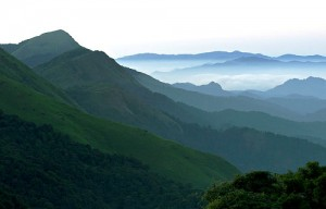 coorg-1
