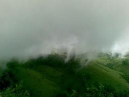 foghills