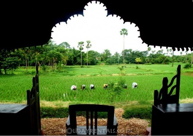 Sreechithrakoodam Ethnic Homestay, Palakkad