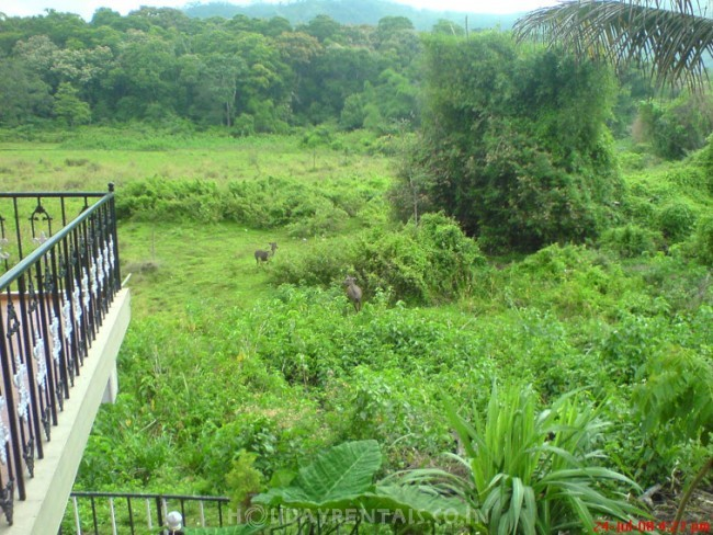 Jungle Palace Homestay, Thekkady