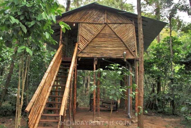 Deep Jungle Home, Mudumalai