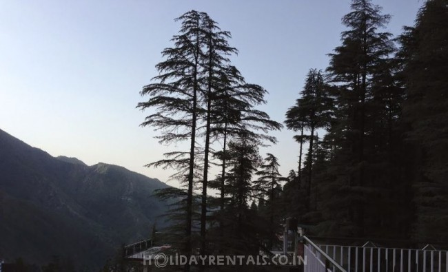 Oak Valley Guest House, McLeod Ganj