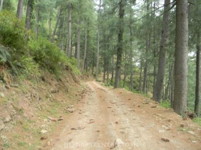 Tranquil Countryside Homes, Shimla