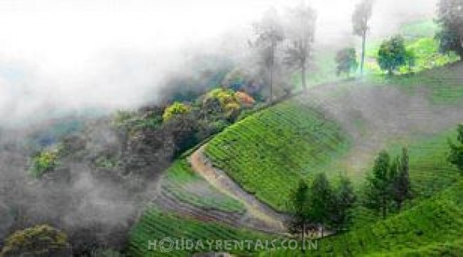 Home Away Home, Munnar