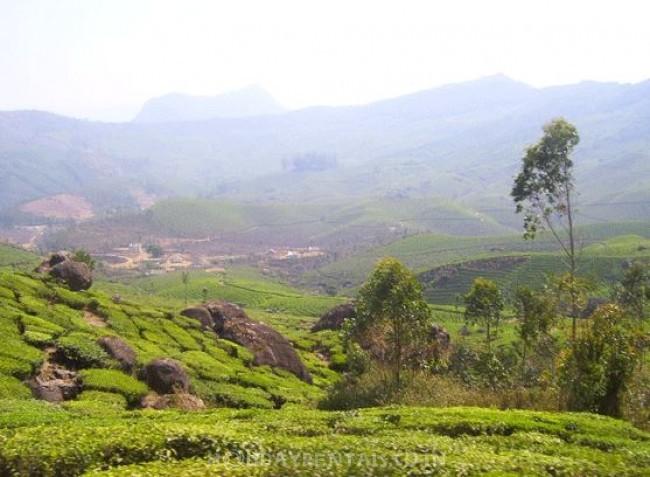Mazhavil Homestay, Munnar