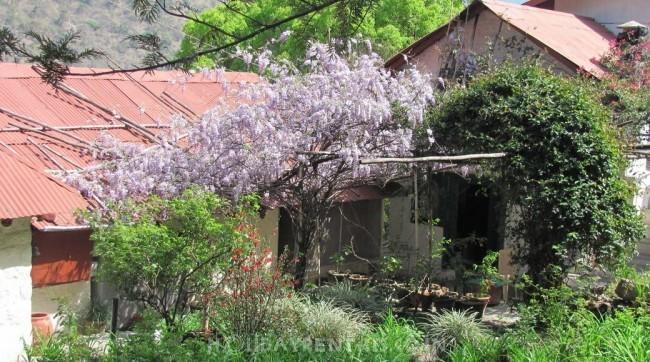 The Cottage Jeolikot, Garhwal