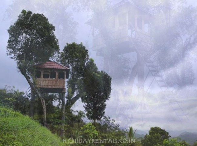 Kollenkeril Plantation Bungalow, Munnar