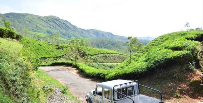 Holiday Cottage on Mangulam Road, Munnar