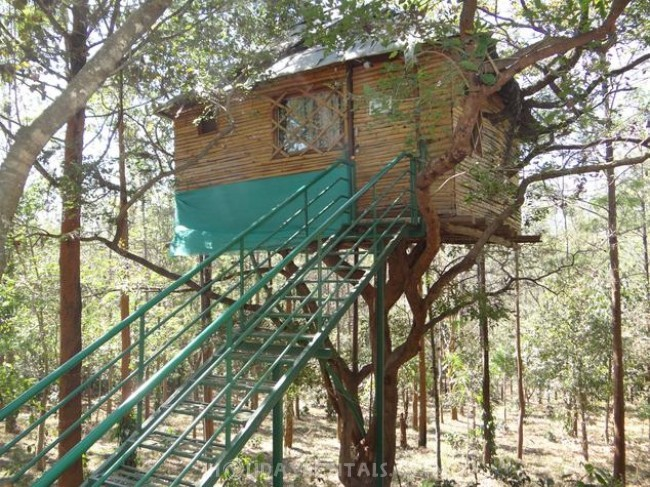 Holiday Homes in Arasinaguppe, Chikmagalur