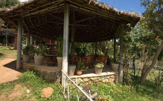 Holiday Jungle Resort, Masinagudi