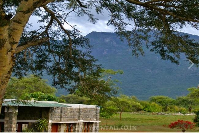 Jungle Home in Mavanalla, Masinagudi