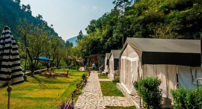 Shoghi Camp Resort, Shimla