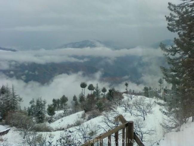 Holiday Home In Fagu, Shimla