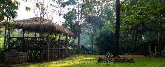 Jungle Villa & Tree house, Masinagudi