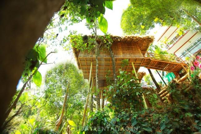 Mountain View Home, Munnar