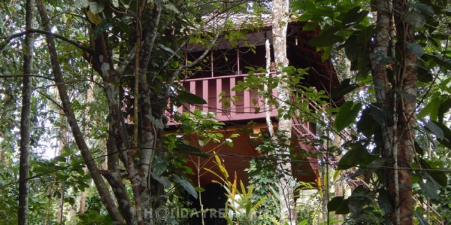 Mountain View Holiday Cottages, Wayanad