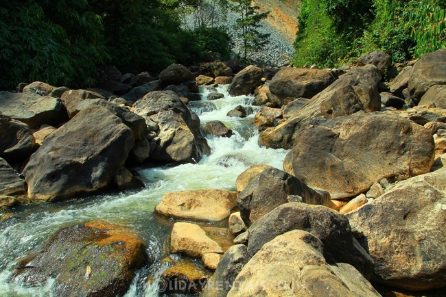 Stay near Kallar Waterfalls, Munnar