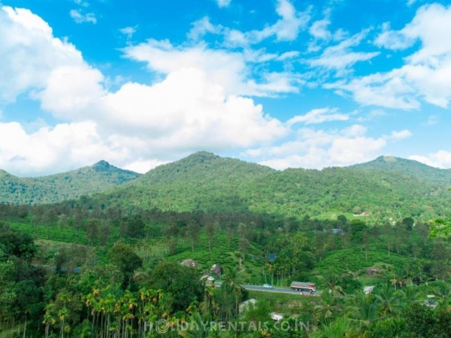 Mountain View Holiday Home, Wayanad
