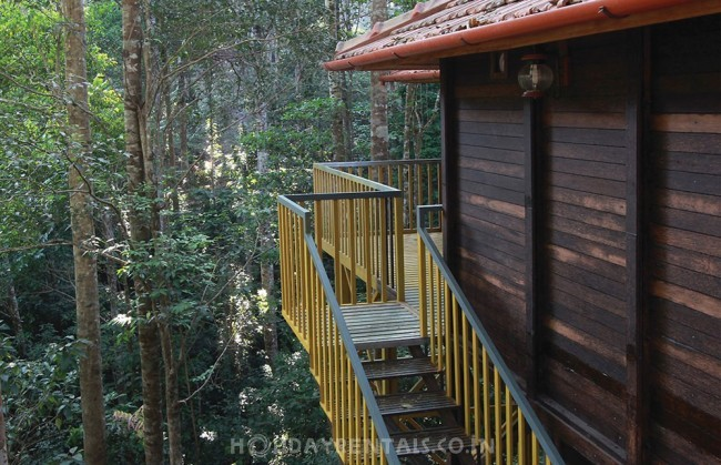 Jungle Resort Devala, Nilgiris