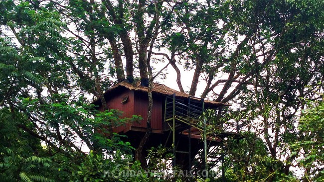 Farm Resort Vagamon, Vagamon