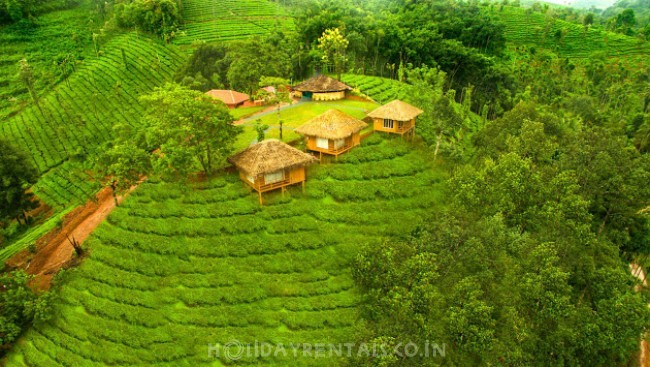 Tea Estate View Holiday Stay, Wayanad