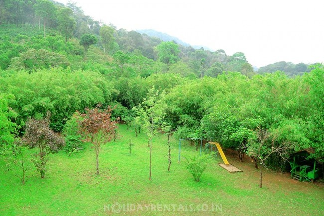 Jungle Stay, Wayanad