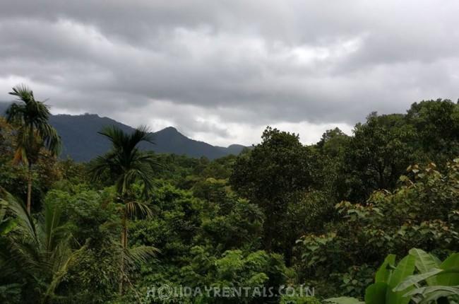 Stay Near Pookode Lake, Wayanad