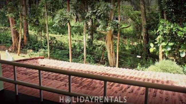 Jungle Stay, Wayanad