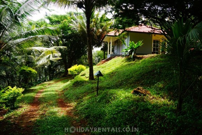 Jungle Stay, Pathanamthitta