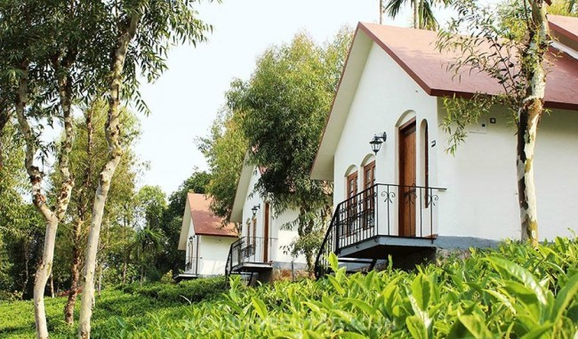 Tea Estate View Holiday Cottage, Wayanad
