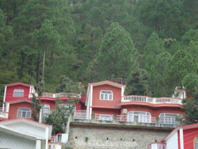 Misty Holiday Cottage, Nainital