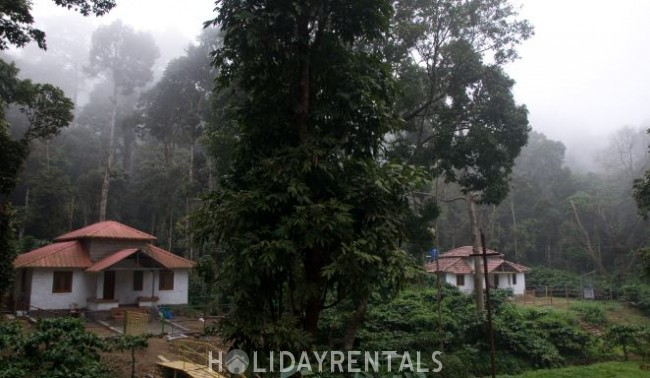 Forest View Stay, Palakkad