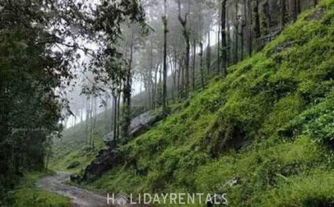 5 Bedroom Holiday Home, Idukki