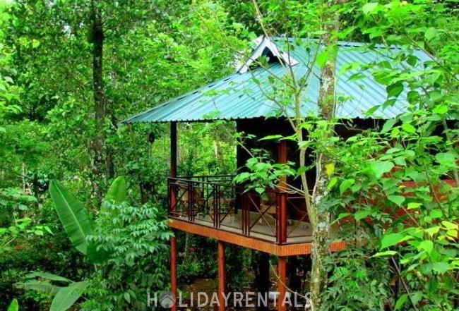 Stay Close To Nature, Thekkady
