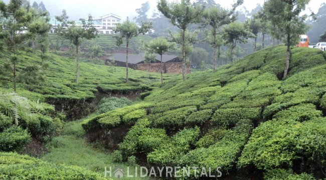 Tranquil Holiday Home, Idukki