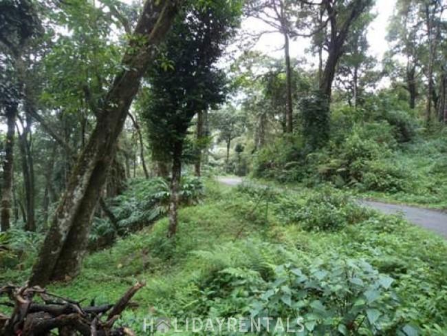 Eco Friendly Holiday Stay , Idukki