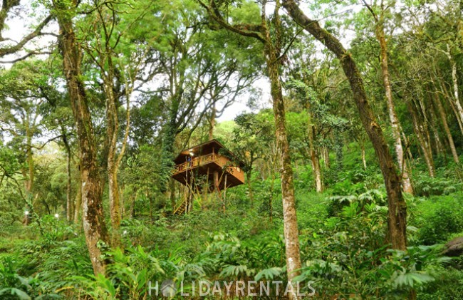 Plantation View Holiday Stay, Idukki