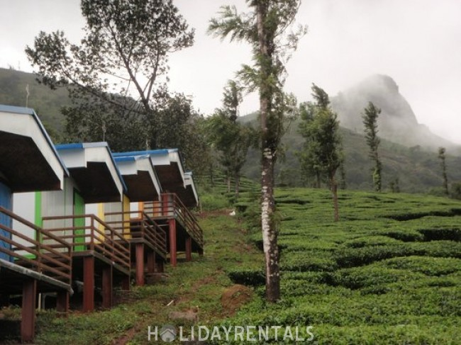 Misty View Holiday Stay, Wayanad