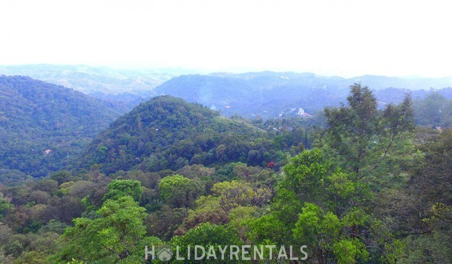 Valley View Holiday Stay, Munnar