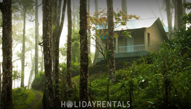 Misty View Resort, Idukki