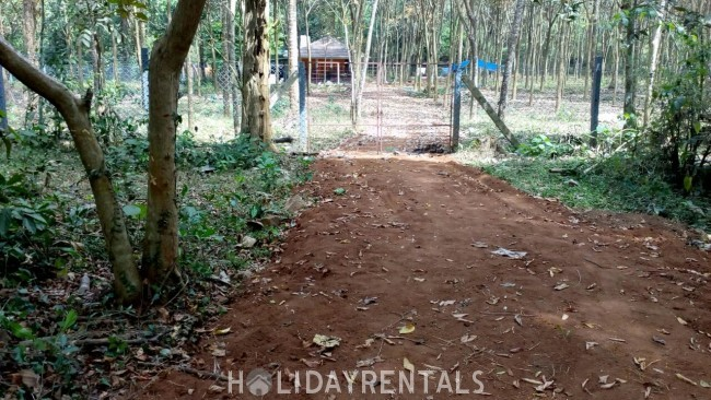 Forest Stay, Thrissur