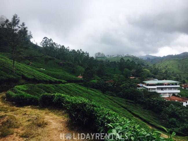 Tea Plantation View Stay, Idukki