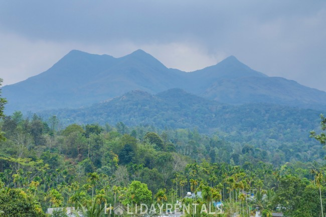 Tea Estate View Home, Wayanad