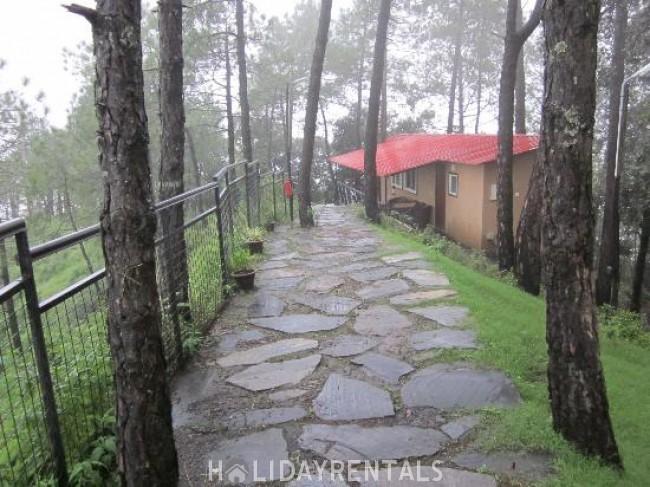 Misty View Stay, Shimla
