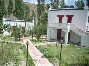 Alchi Resort, Leh