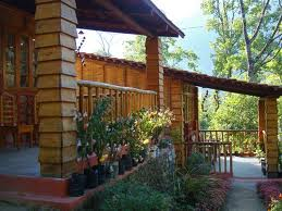 Tathagata Farm, Darjeeling